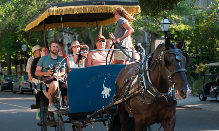 Carolina Polo and Carriage Company