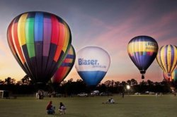 Charleston Hot Air Balloon Festival