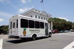 Pineapple Tour Group Bus