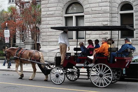 Charleston Horse Drawn Carriage Tour