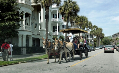 Things to do in charleston sc top things to see and do for What to do in summerville sc