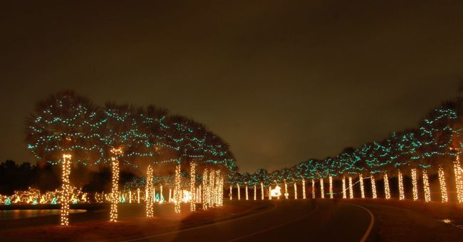 Charleston Holiday Festival of Lights