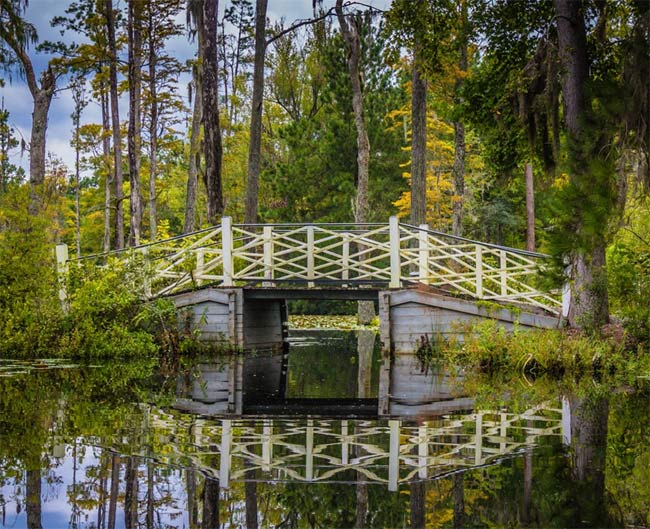 Cypress Gardens SC