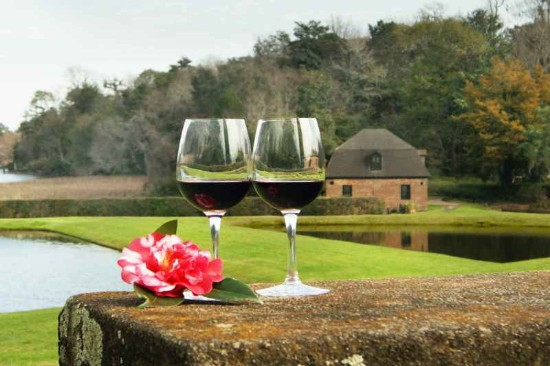 Garden Strolls and Wine Tasting at Middleton Place