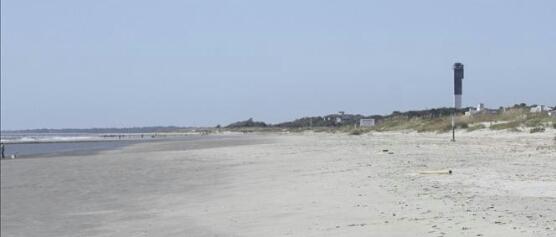 Charleston Sc Beaches The Top Charleston Beaches