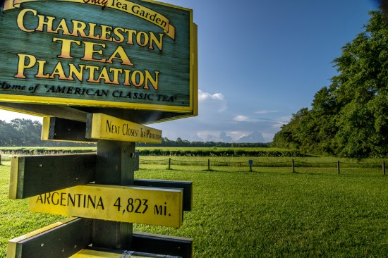 Free things to do in Charleston SC