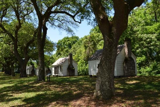 Unveiling McLeod Plantation Historic Site