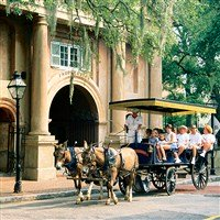 Charleston Horse-Drawn Carriage Ride